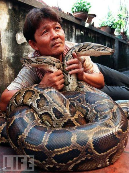 How People Love Their Snakes (23 pics)