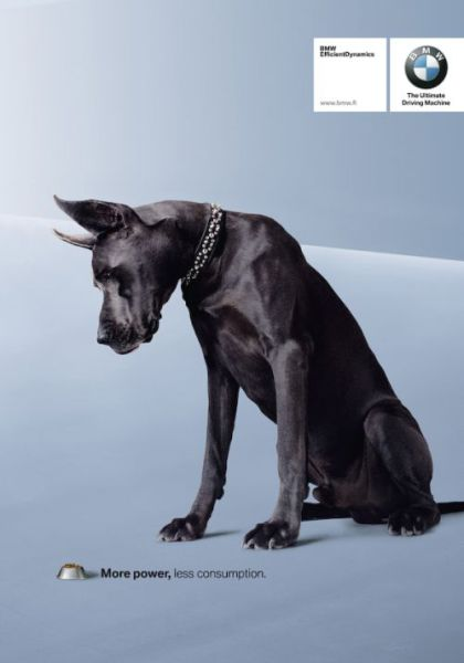 Amazing Ads with Dogs (31 pics)
