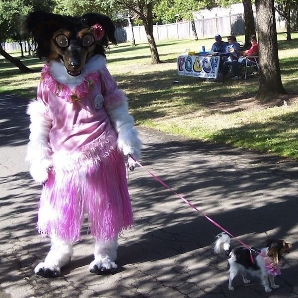 Funny Fursuits (19 pics)