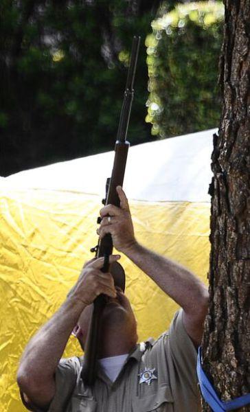Bear Cub Shot to Be Saved (12 pics)