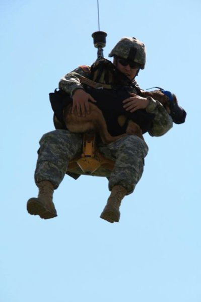 Dogs Do Parachutes Too (23 pics)