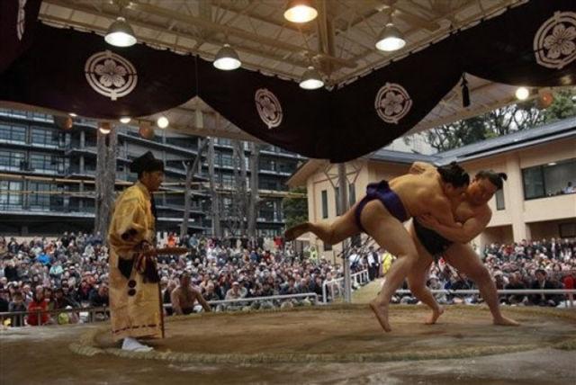 Sumo (13 pics)