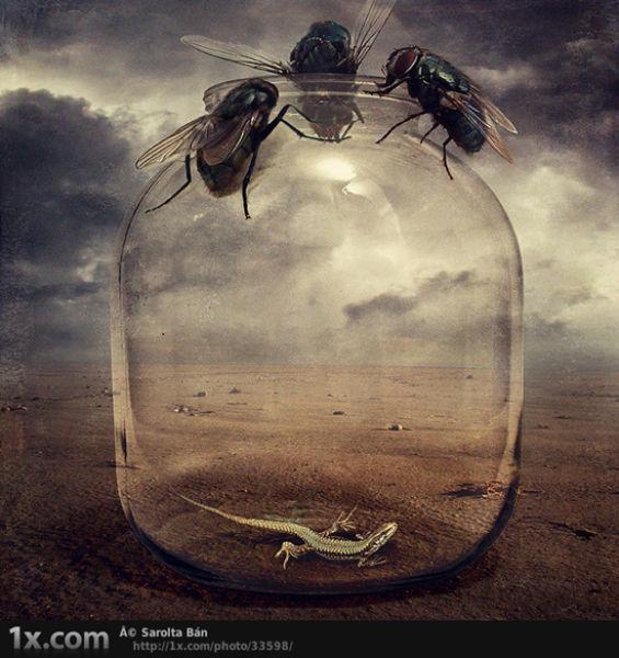 Amazing Digital Art (34 pics)