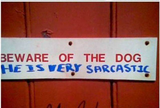 Humorous and Brilliant Inscriptions (25 pics)