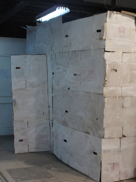 A Cardboard World (14 pics)