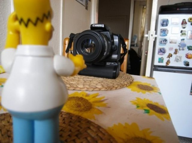 Several Days from Life of Homer Simpson by Andrew Lee (32 pics)