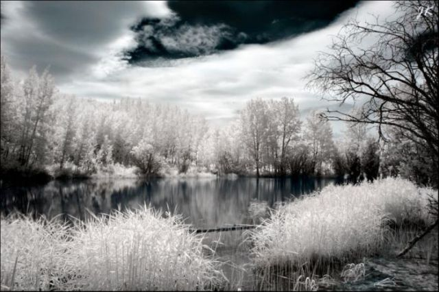 Amazing Infrared Pictures. Part 2 (32 pics)