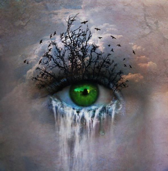 Beautiful Pictures of Eyes