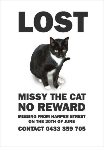 missing pet flyer template free .
