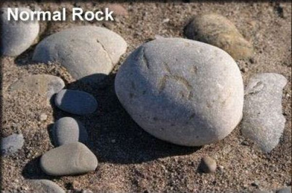 How Games Change The Rock 21 Pics Izismile Com