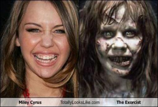 Funny Look Alikes. Part 2 (46 pics)