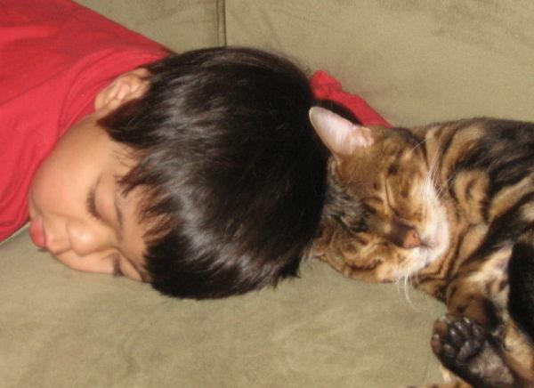 Children and Animals. Part 2 (84 pics)