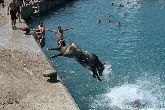 The Running of the Bulls (25 pics)
