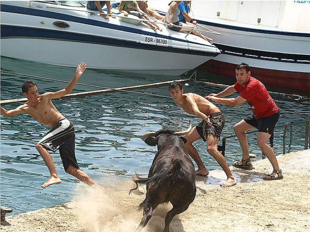 The Running of the Bulls (25 pics)