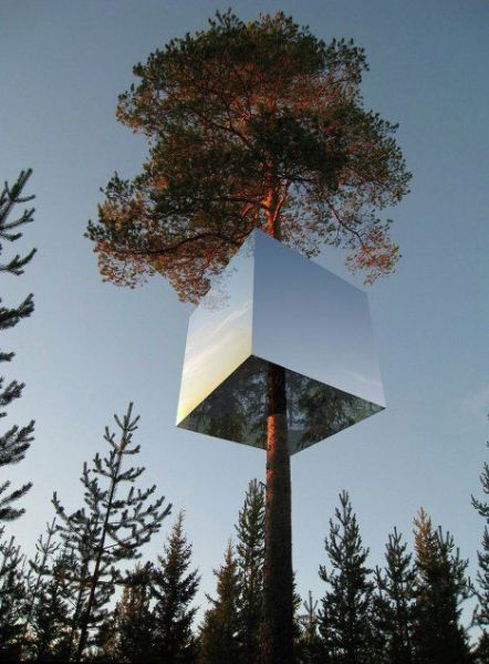 Hotels on Swedish Trees (14 pics)