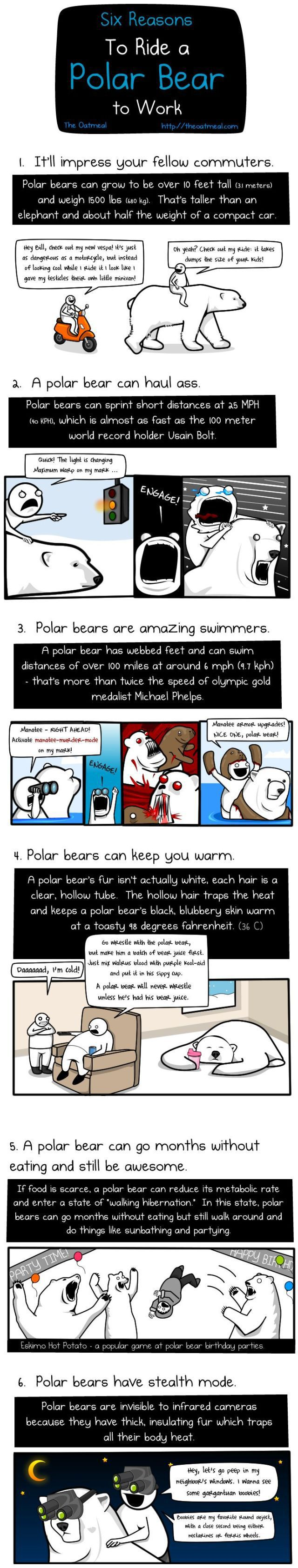Why You Should Ride a Bear to Go to Work! (1 pic)
