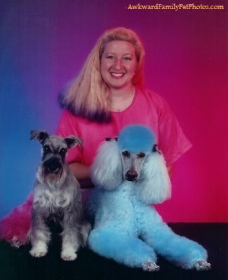 Awkward Family Photos with Pets (30 pics)