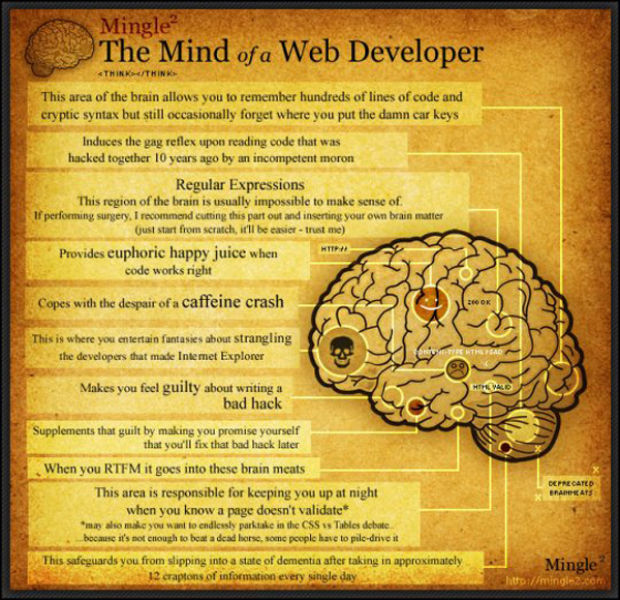 The Mind of Web Developer (1 pic)