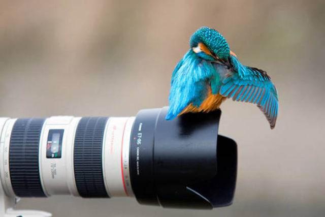Amazing Conceptual Photographs (22 pics)