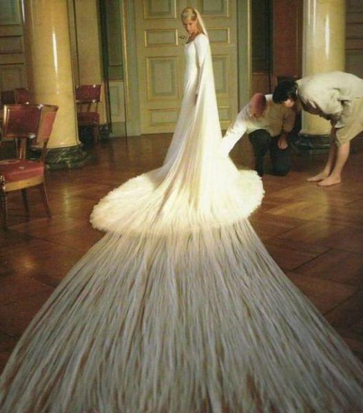 Beautiful and Unusual Wedding Dresses (38 pics)