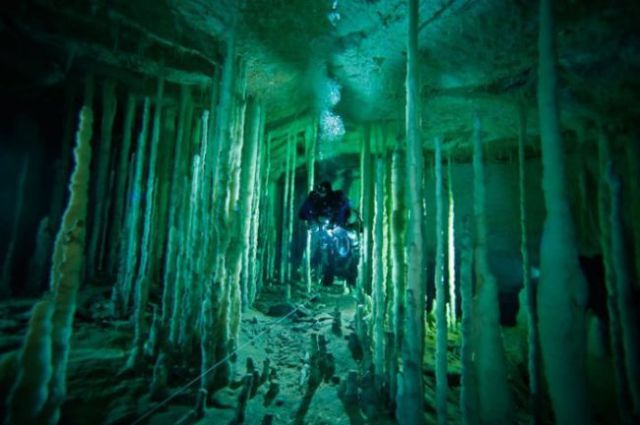 This is Bahamas Underwater (22 pics)