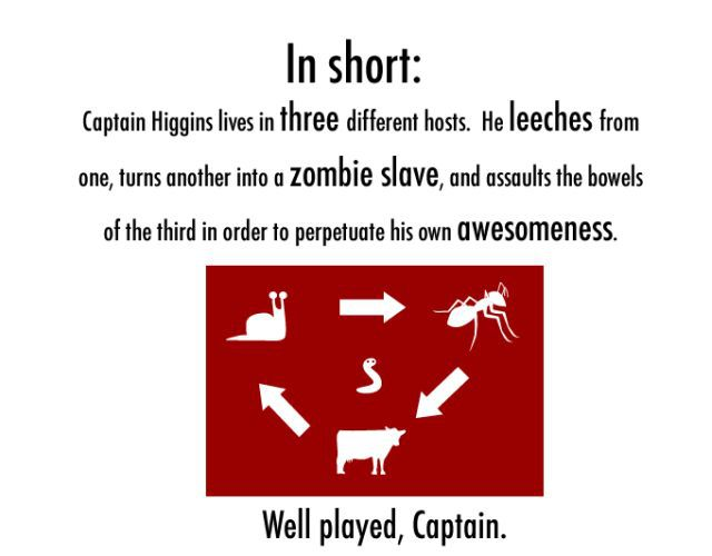 The Life of Captain Higgins (7 pics)