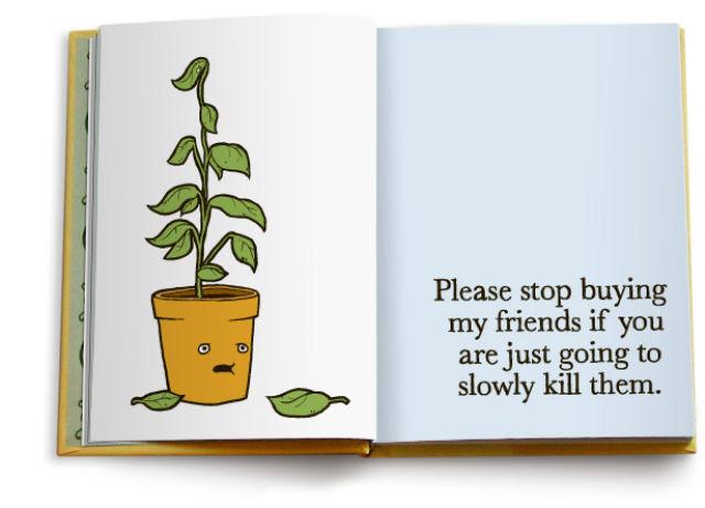 No More Friends (10 pics)