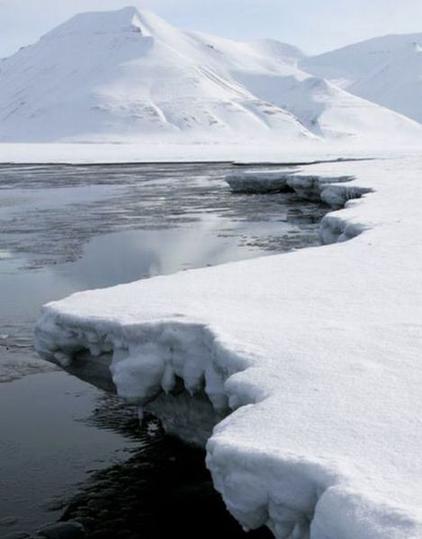 Amazing Arctic (25 pics)