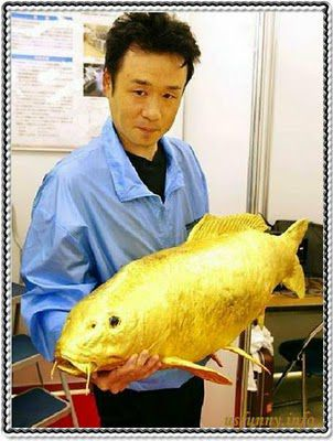 Eight incredible golden creatures on earth (8 pics)