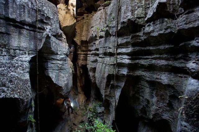 Madagascar Stone Forest (19 pics)