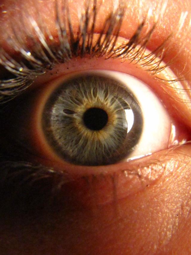 Eyes (10 pics)