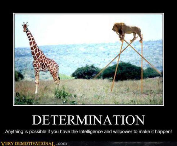 Funny Demotivational Posters. Part 6 (78 pics)