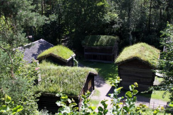 Amazing Grass Roofs (12 pics)