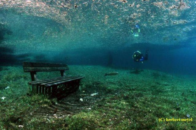 Beautiful Underwater Meadow (28 pics)