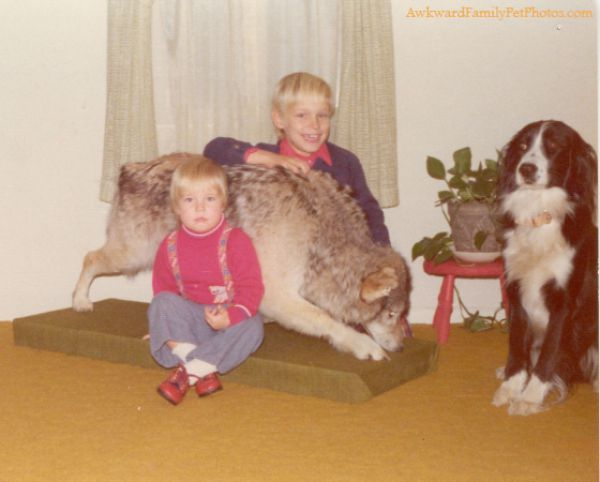 Awkward Family Photos with Pets. Part 2 (27 pics)
