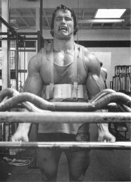 Iron Arnold (100 pics)