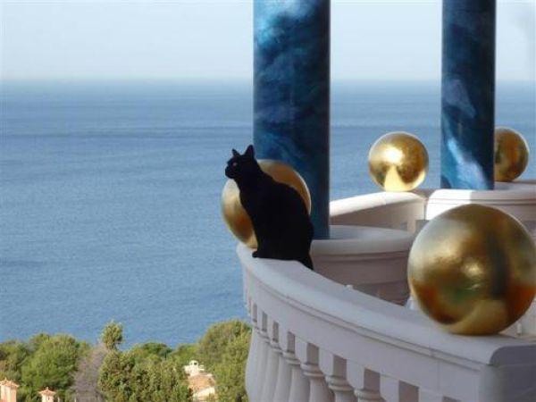 Incredible Residence Villa Colani (34 pics)