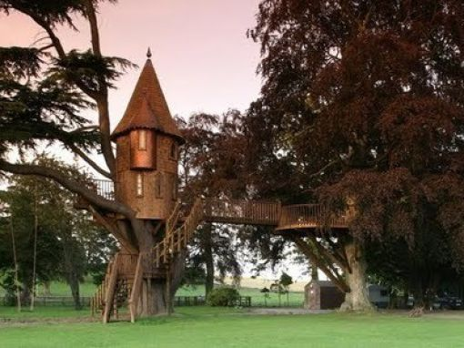 Beautiful Tree Houses (35 pics)