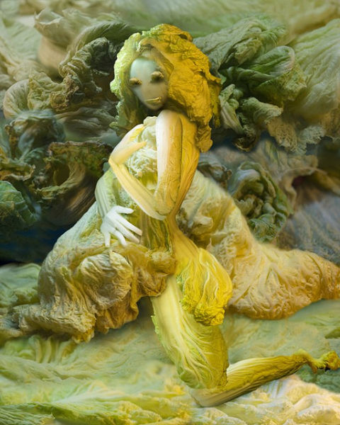 Chinese Cabbage Artwork (13 pics)