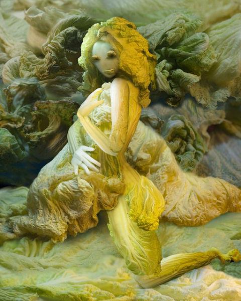 Chinese Cabbage Artwork (13 pics)