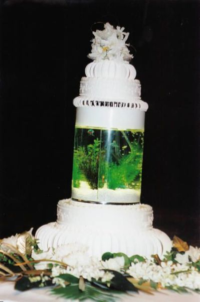 Ausgefallene Hochzeitstorten Blog Lieferando De