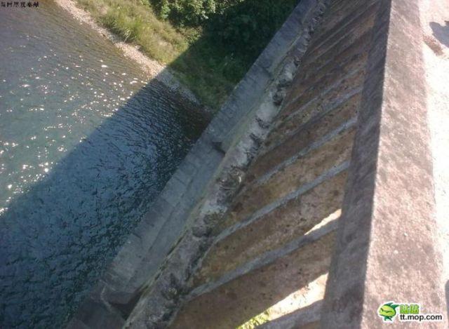 One Way to Build a Bridge (7 pics)