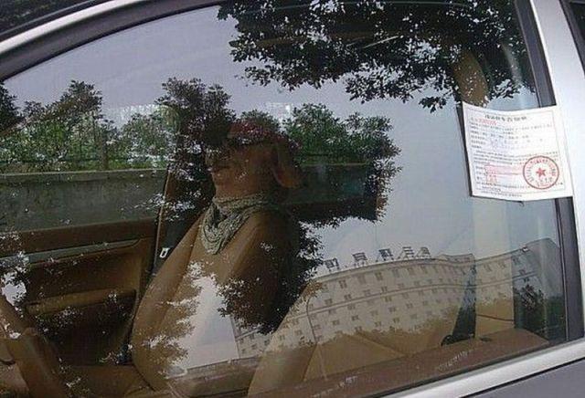 Unusual Passenger (3 pics)