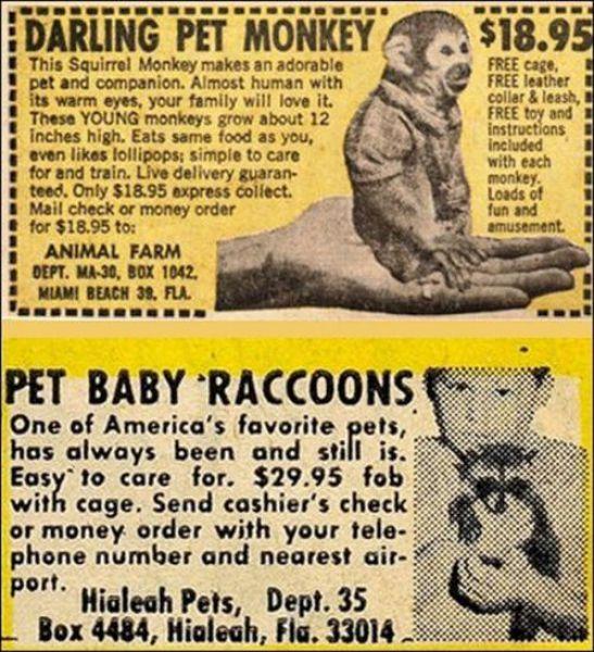 Strange Retro Advertisements With Children (17 pics)