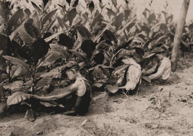 Child Labor in the U.S. History