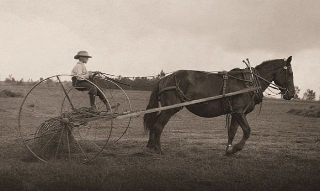 Child Labor in the U.S. History