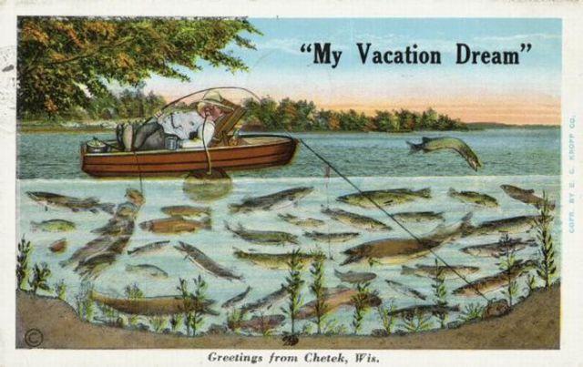 """Freak"" Postcards"