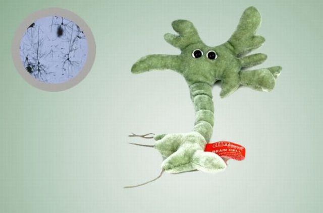 Plush Dolls as Microbes