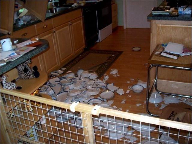 Accident in the Kitchen