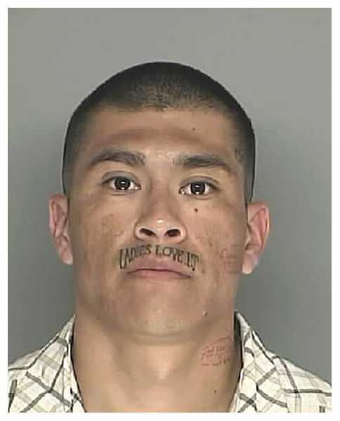 The Most Creative Mug Shots of 2010
